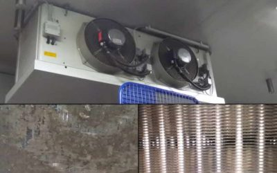 Reinigung von Wärmetauschern und Kühlhäusern in der Lebensmittelindustrie